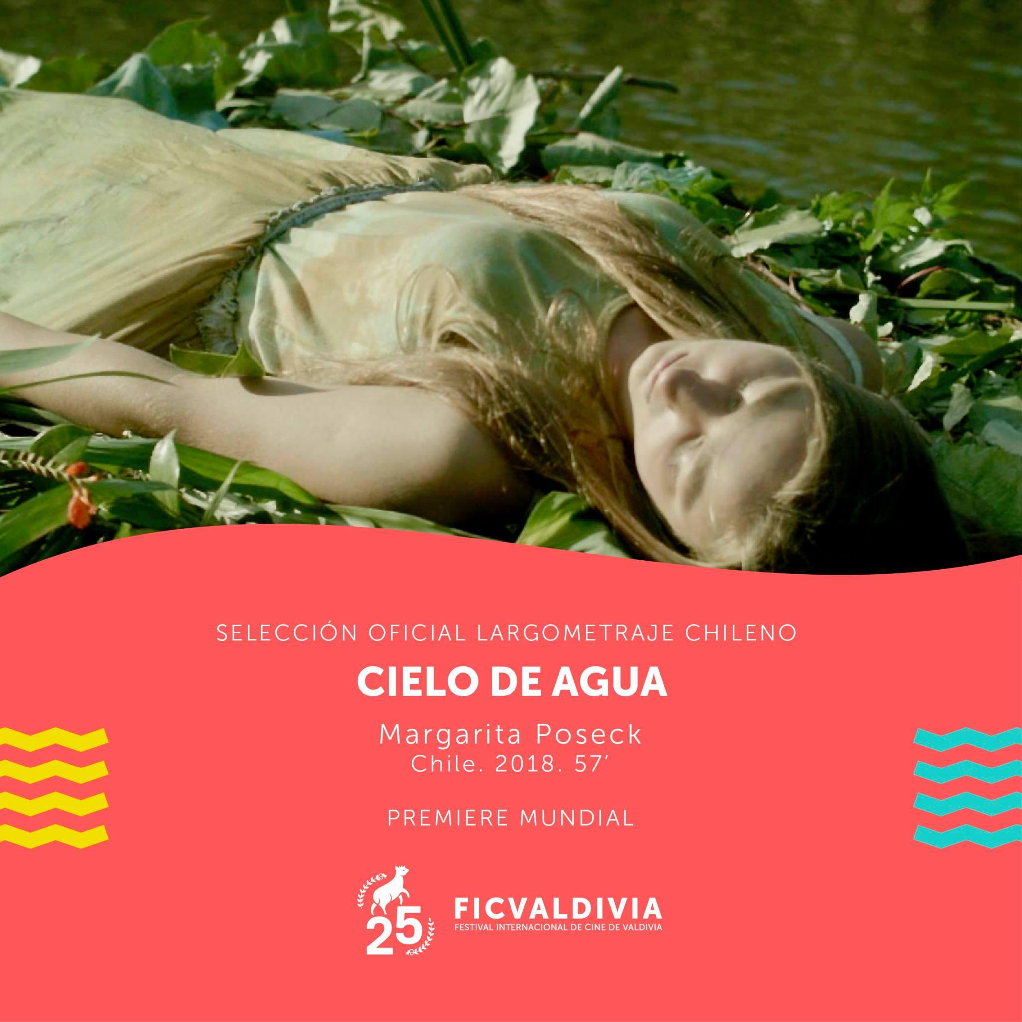 Cielo de Agua. Cartel FICVALDIVIA 2018. Poseck Films