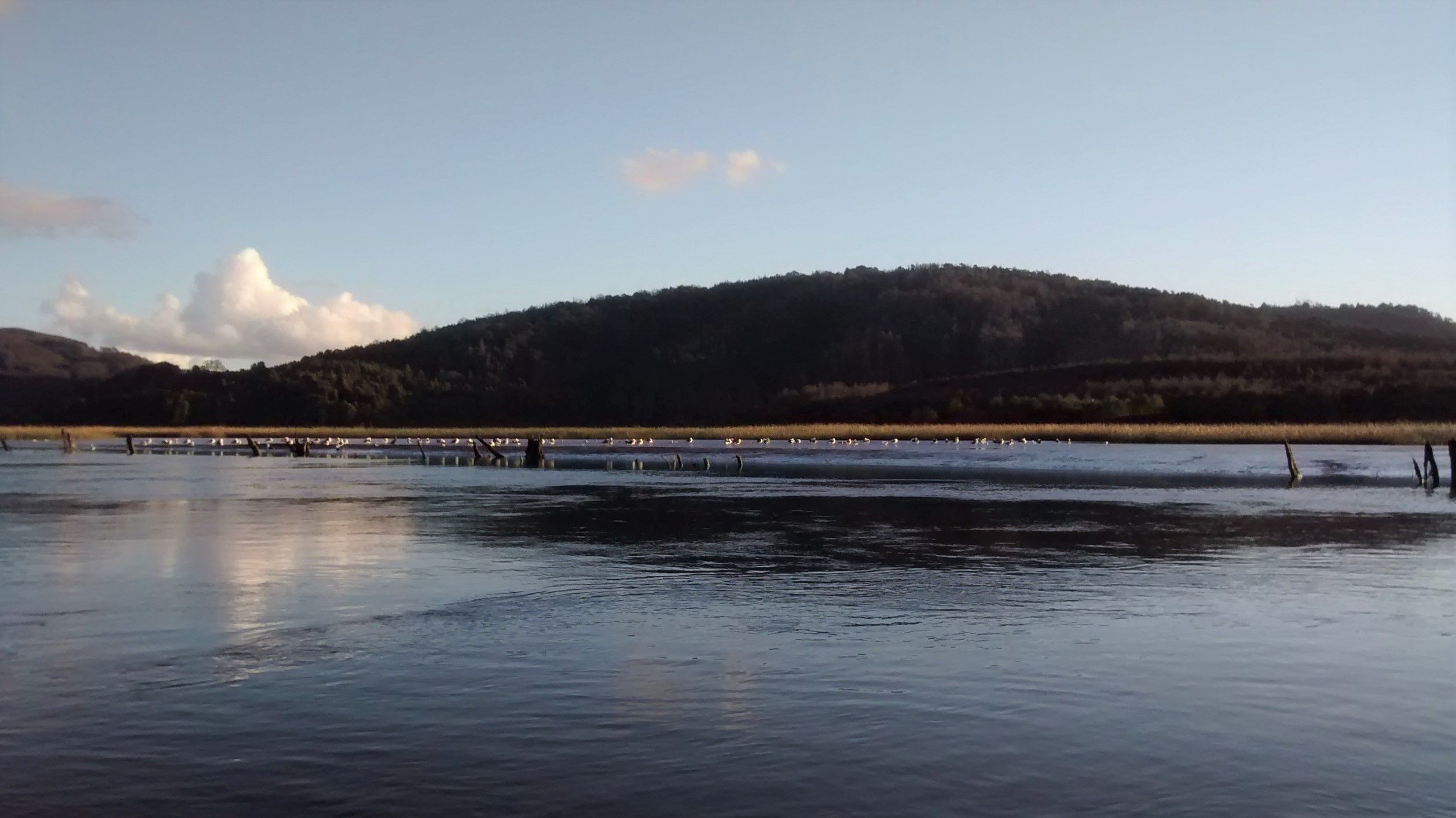 Cielo de Agua-Rio de Valdivia